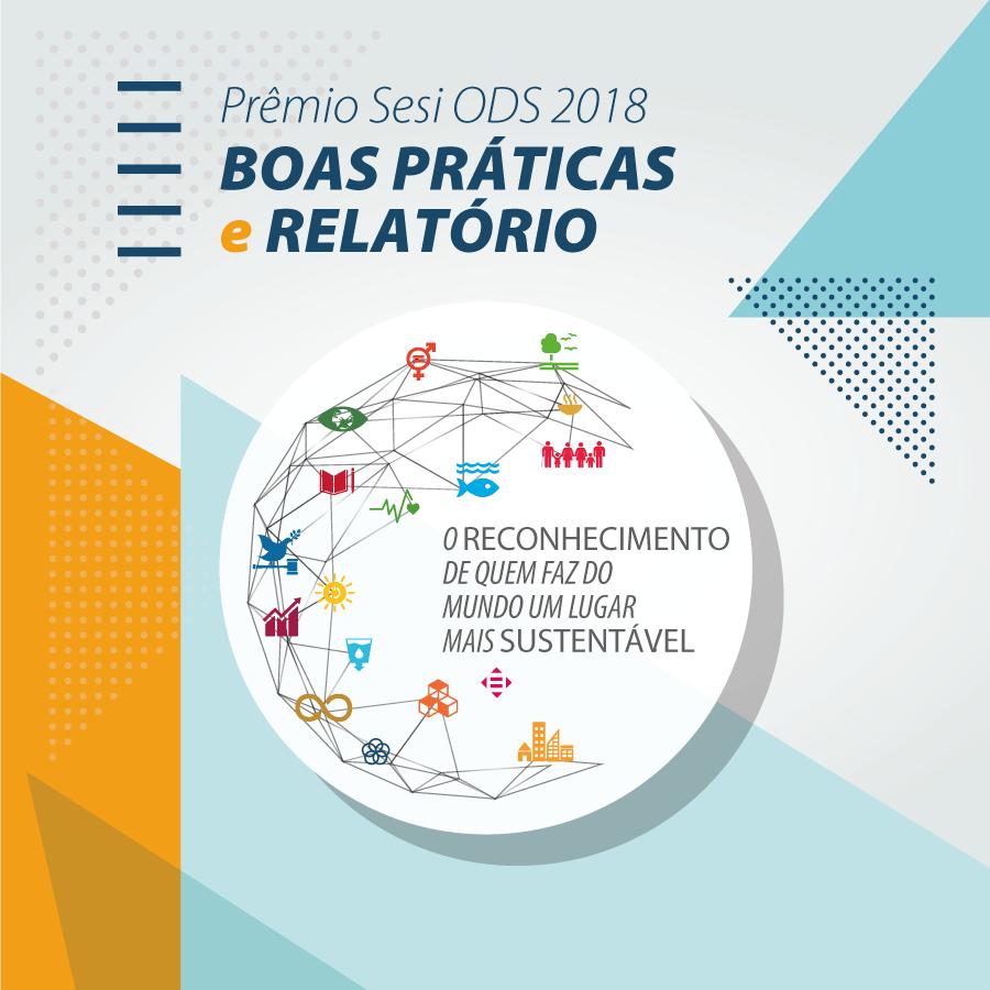 Relatório Prêmio ODS 2018